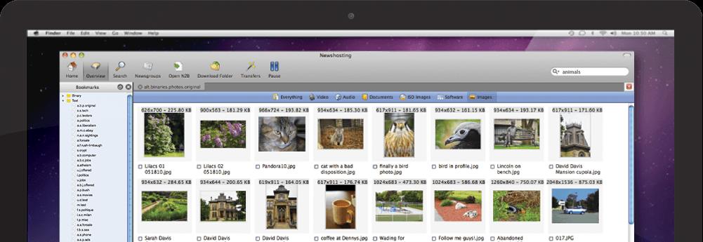 usenet news reader binary options